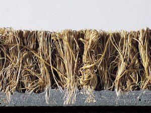 Kokosmat RUCO 50×80 cm 24mm